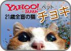 Yahoo! japan ペット